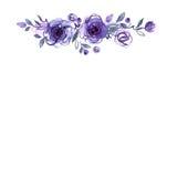 Quadro pintado à mão da flor da aquarela bonito ilustração royalty free