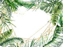 Quadro poligonal do ouro da aquarela com folhas de palmeira Etiqueta floral tirada m?o isolada no fundo branco botanical ilustração royalty free