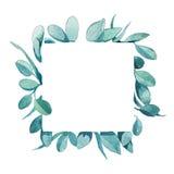 Quadro quadrado da aquarela das folhas verdes Foto de Stock