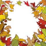 Quadro quadrado das folhas de outono Colorido brilhantemente Imagens de Stock