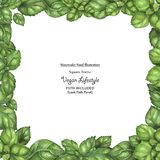 Quadro quadrado do vegetariano da aquarela pelas folhas da manjericão do frescor ilustração stock