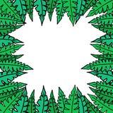 Quadro quadrado verde com folhas ilustração stock