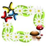 Quadro que consiste em flores, em cogumelos e em borboletas Vetor IL Fotos de Stock