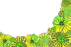 Quadro redondo da papoila das flores Desenho da aquarela com um curso do contorno em um fundo branco, para o projeto dos convites imagens de stock royalty free