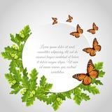 Quadro redondo das borboletas Fotos de Stock