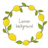 Quadro redondo do limão Imagem de Stock Royalty Free