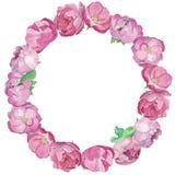 Quadro redondo dos peones e das rosas ilustração stock