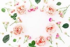 Quadro redondo floral de rosas, de botões e de folhas da peônia no fundo branco Configuração lisa, vista superior Fundo floral Foto de Stock