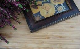 Quadro secado da flor Fotos de Stock Royalty Free