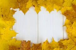 Quadro, teste padrão das folhas de outono amarelas no fundo de madeira branco fotos de stock royalty free