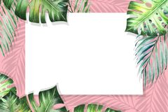 Quadro tropical bonito da beira das folhas Monstera, palma Pintura da aguarela Livro Branco no contexto cor-de-rosa ilustração royalty free