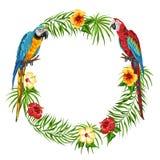 Quadro tropical com papagaios Ilustração Stock