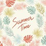 Quadro tropical do verão Foto de Stock Royalty Free