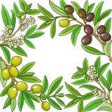 Quadro verde-oliva do vetor fotografia de stock