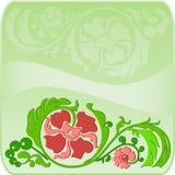 Quadro verde quadrado floral com a sombra Imagem de Stock