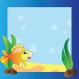 Quadro - vida marinha Foto de Stock Royalty Free