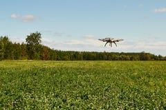 quadrocopter de bourdon de vol à Photographie stock libre de droits
