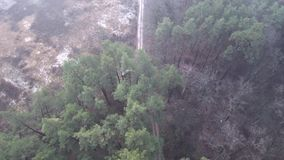 Quadrocopter flies over the forest road stock video footage