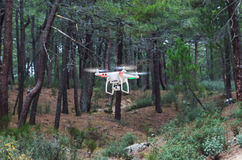 Quadrocopter flying through the forest Royalty Free Stock Photography
