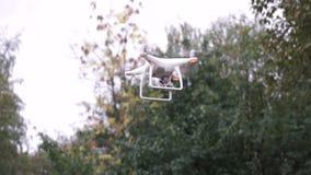 Quadrocopter mientras que vuela en el bosque almacen de video