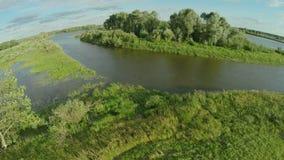 Quadrocopter, vliegen over de rivier die een klein eiland wikkelen Er zijn vele bomen langs de rivier De zonnige dag van de zomer stock videobeelden