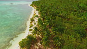 Quadrocopters view of palm trees and deserted beach. Quadrocopters view of palm trees and deserted white beach stock video