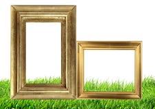 Quadros dourados da foto no fundo da natureza da grama verde Fotos de Stock Royalty Free