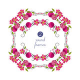 Quadros redondos do vetor com romã e flor Imagens de Stock Royalty Free