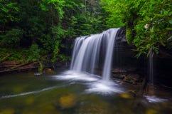 Free Quadrule Falls, Summer, Martins Fork Wildlife Management Area Stock Image - 41944251