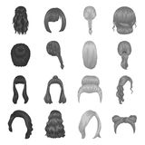 Quads, braids and other types of hairstyles. Back hairstyle set collection Stock Photo