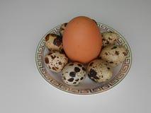 Quaglie ed uova del pollo Fotografie Stock