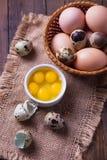 Quaglie ed uova del pollo Immagini Stock Libere da Diritti