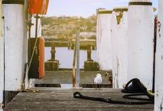 Quai au balmain Photo libre de droits