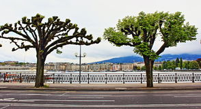 Quai du Mont-Blanc Geneva Royalty Free Stock Images