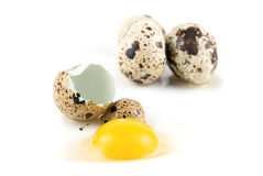 Quai eggs Royalty Free Stock Image