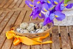 Quailägg och irises för easter Fotografering för Bildbyråer
