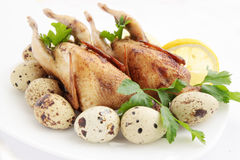 Quail. Baked quail with the lemon and the eggs stock images