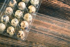 Quail bird eggs. Organic quail eggs in the container on white background. Natural gourmet meal stock photos