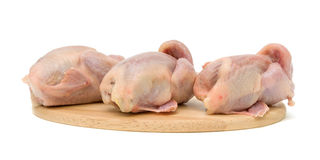 Quail carcasses on a cutting board on a white Royalty Free Stock Photography