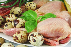 Quail carcasses and eggs. Still life with Fresh quail carcasses, eggs and basil Stock Photography