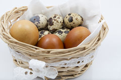 Quail and chicken eggs in a basket closeup on white Royalty Free Stock Photo