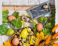 Quail and chicken eggs in a basket with spring greens Stock Photo
