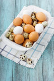 Quail and chicken eggs. Eggs in a bowl on a turquoise vintage surface Stock Photo