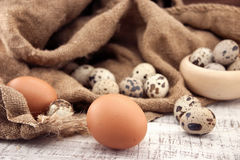 Quail and chicken eggs on rustic wooden background. Soft view Royalty Free Stock Photo