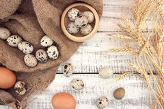 Quail and chicken eggs on rustic wooden background. Top view Royalty Free Stock Photography