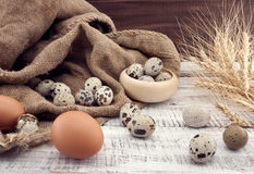 Quail and chicken eggs on rustic wooden background. Top view Stock Photography