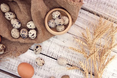 Quail and chicken eggs on rustic wooden background. Top view Royalty Free Stock Photo