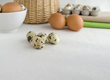 Quail and chicken eggs Stock Image