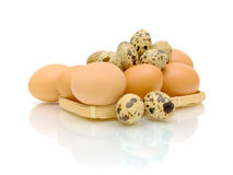 Quail and chicken eggs on white background Stock Photo