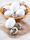 Quail and chicken eggs in a wicker basket Royalty Free Stock Photography